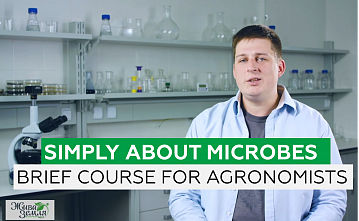 SIMPLY ABOUT MICROBES. BRIEF COURSE FOR AGRONOMISTS