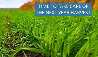 Note to agronomist or it's time to take care of the next year harvest