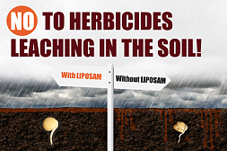 How to prevent herbicides leaching in the soil?