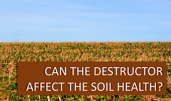 Can the destructor affect the soil health? Research by scientists