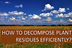 How to decompose plant residues efficiently?