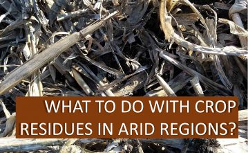What to do with crop residues in arid regions?